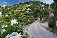Luxury villas dot the landscape of Peter Bay Rd. on the island of St. John, United State Virgin Islands.