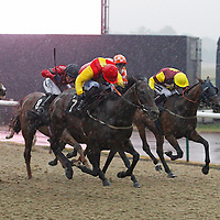 Comedy House and Philip Prince winning the 8.00 race