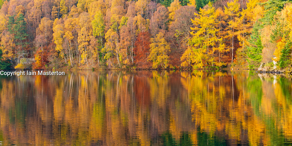Spectacular late autumn tree colours  are reflected in the waters of Loch Faskally in Pitlochry, Perthshire, Scotland, UK.