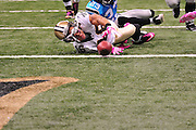 "New Orleans Saints WR Lance Mooore 16 fumbles at the goal lineduring the game against the Caoliina Panthers. 3,2010 prior to the Saints game against the Carolina Panthers. The NFL has gone ""Pink"" for October in honor of Breast Cancer Awareness. The Saints went on to win 16-14. John Carney kicked three field goals to help the Saints win. PHOTO©SuziAltman.com"