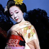 Geisha,h&eacute;roine du documentaire du r&eacute;alisateur<br /> Romain Guelat<br /> Gen&egrave;ve ,novembre 2004<br /> &copy; Thierry Parel