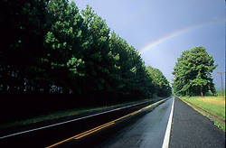 Arco-iris sobre a rodovia BR 290 depois da chuva e alameda de Pinus taeda / Rainbow over highway after rain and lane of Pinus taeda