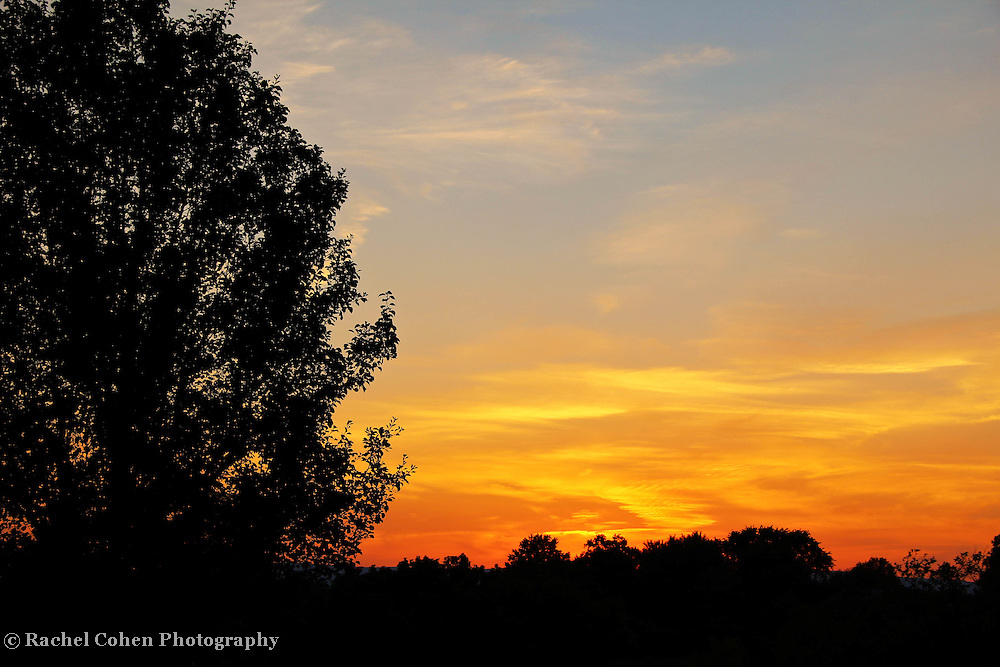 &quot;Light a Fire&quot;<br />