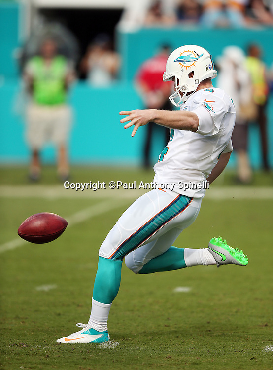 Miami Dolphins punter Matt Darr (4) punts during the 2015 week 11 regular season NFL football game against the Dallas Cowboys on Sunday, Nov. 22, 2015 in Miami Gardens, Fla. The Cowboys won the game 24-14. (©Paul Anthony Spinelli)
