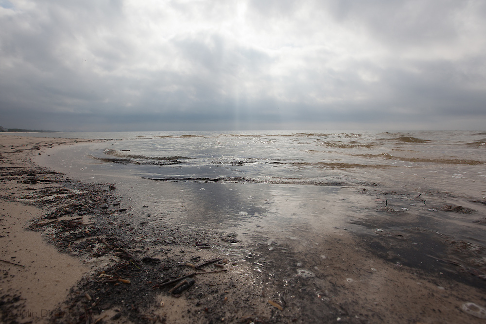 The beach in Christian Pass Mississippi where an<br /> unprecedented number of dead animals   have washed up on the shores of Mississippi along the Gulf of Mexico starting almost a year after the BP oil spill.