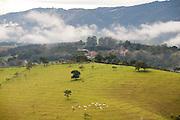 Toledo_MG, Brasil...Paisagem rural em Toledo...The rural landscape in Toledo...Foto: LEO DRUMOND / NITRO