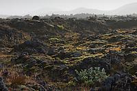 Fjallabak Nature Reserve in ash storm. Interior of Iceland.