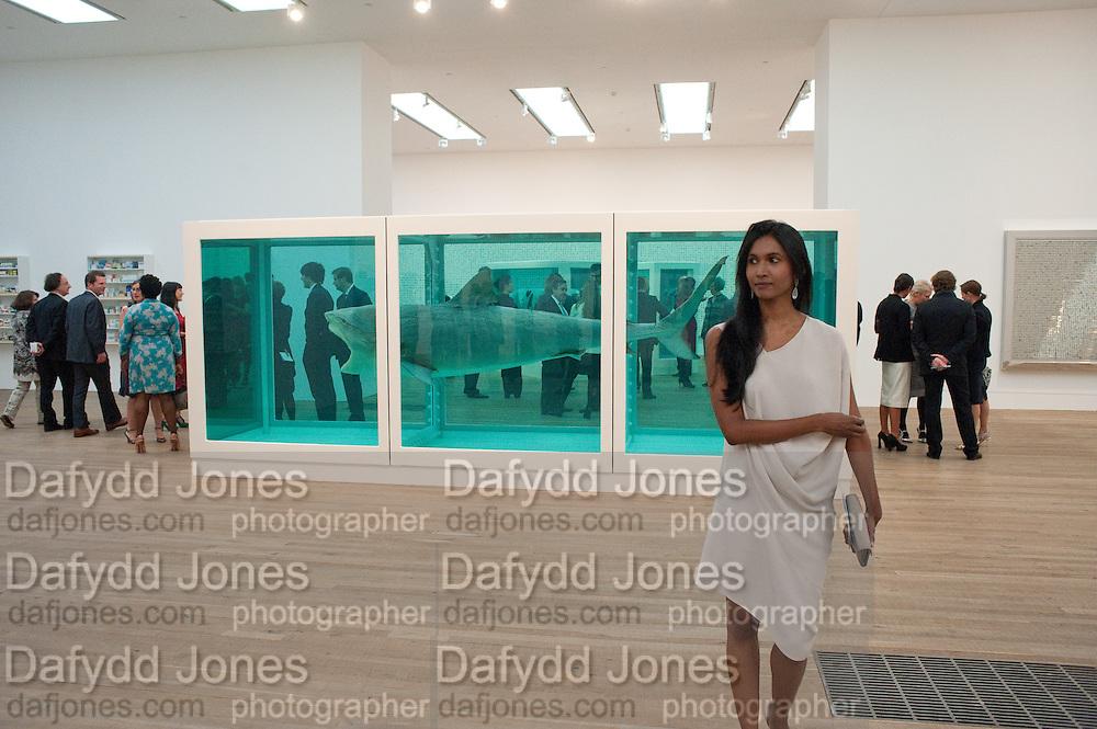 SUKANYA RAJARATNAM, Damien Hirst, Tate Modern: dinner. 2 April 2012.