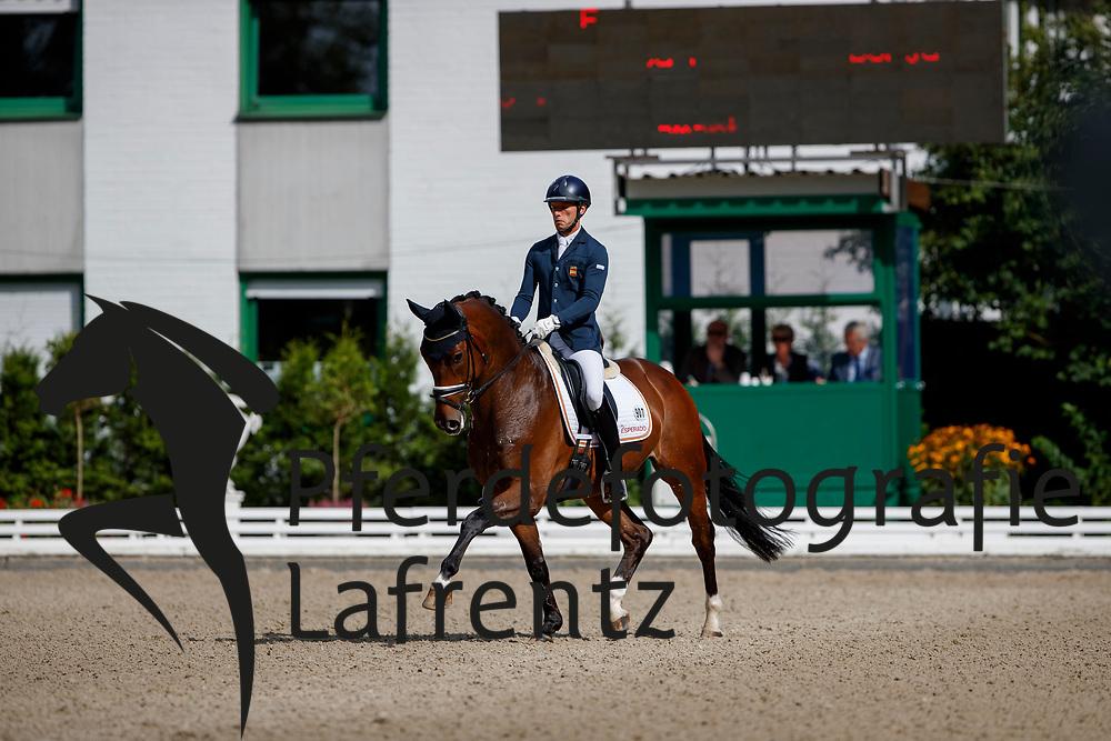 Carrascosa Martinez, Borja (ESP) Forbes<br /> Warendorf - Bundeschampionate 2017<br /> © www.sportfotos-lafrentz.de/Stefan Lafrentz