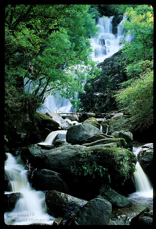 Torc Waterfall in Killarney National Park, Ireland.