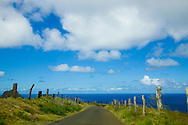 Along the road of the North Shore of West Maui