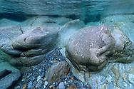 Underwater scenes in the whitewater river Verzasca, Ticino, Switzerland