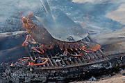 Freshly caught lobster being grilled at Tata Beach, Golden Bay, New Zealand