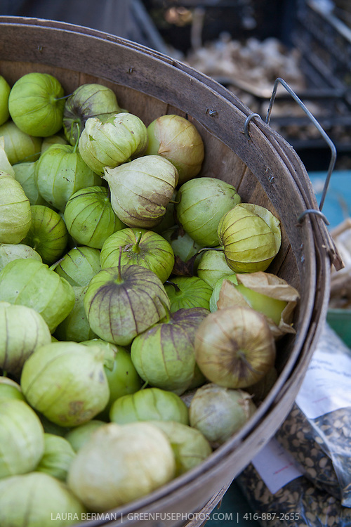 Tomatillos in a bushel basket at a farmers market.