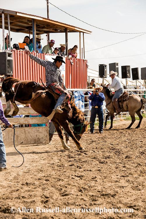 Saddle Bronc Riding, Crow Fair Rodeo, Crow Indian Reservation, Montana, Vernon Wagner, Richard Real Bird takes photographs