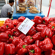 Fresh organic red bell pepper background, photo taken at local farmers market, in New York City