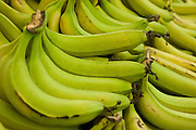 A pile of fresh Banana
