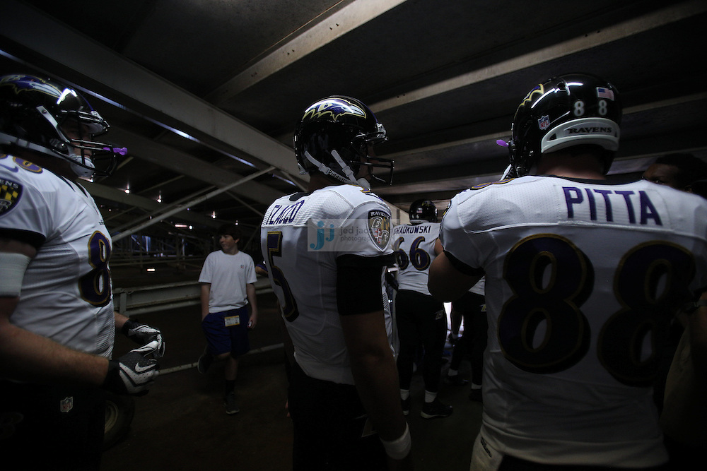 Baltimore Ravens quarterback Joe Flacco (5) looks on against the San Diego Chargers during an NFL game on Sunday, November 25, 2012 in San Diego, CA.  (Photo by Jed Jacobsohn)