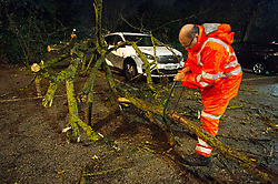 ©Licensed to London News Pictures 14/01/2020<br /> Dartford, UK. A Southeastern member of staff is doing his best to remove the tree at midnight. Storm Brendan has blown down a large tree onto a white Kia Sorento car in Dartford train station car Park in Dartford, Kent. The tree has caused significant damage to the vehicle. Photo credit: Grant Falvey/LNP