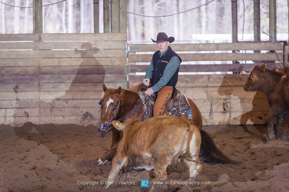 April 30 2017 - Minshall Farm Cutting 2, held at Minshall Farms, Hillsburgh Ontario. The event was put on by the Ontario Cutting Horse Association. Riding in the 25,000 Novice Horse Non-Pro Class is Scott Reed on LL Crockett Rocket owned by the rider.