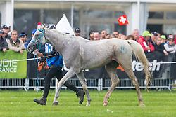 Feiruz Boulbolova, (SVK), Musafer<br /> Alltech FEI World Equestrian Games™ 2014 - Normandy, France.<br /> © Hippo Foto Team - Leanjo de Koster<br /> 25/06/14