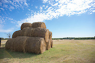 Round bales of hay sit stacked waiting for latter use or transport.