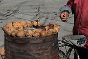 China, Beijing, street vendor
