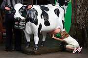 Singapore Zoo. Kids playing with Ben and Jerry's cow.