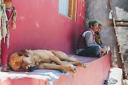 A dog sleeps as the locals chat at Kalpa Village, Kinnaur