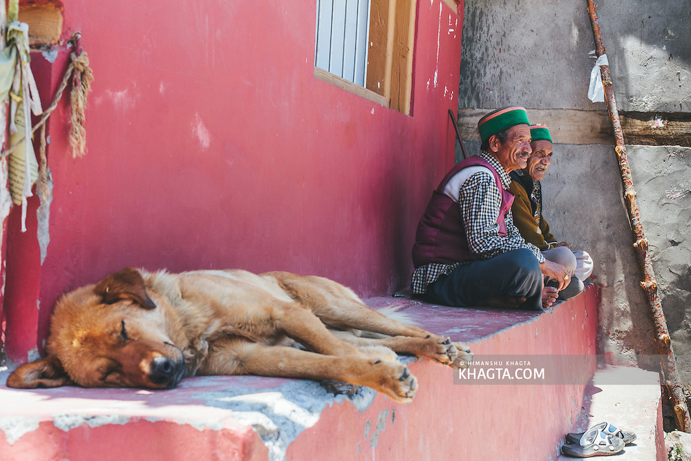 A dog sleeps as the locals chat at Kalpa Village, Kinnaur