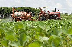 Floresta, PR, Brasil     Nov/2005.Plantio direto de soja e aplicacao de defensivos agricolas na lavoura./ Direct plantation of soya and aplication of pesticides..Foto Marcos Issa/Argosfoto