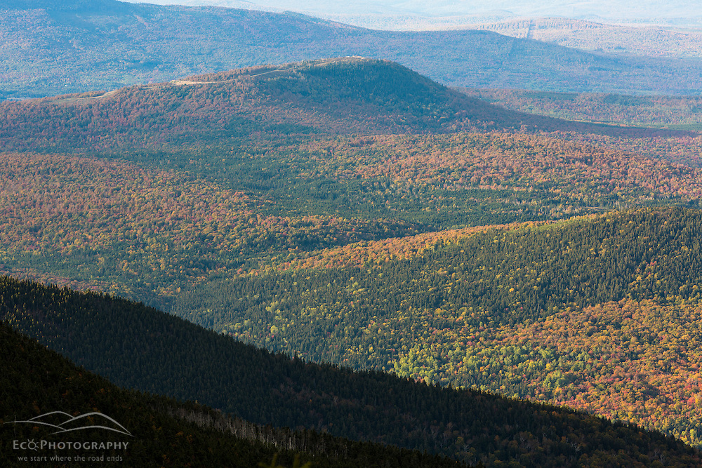 The forests and hills of Reddington Township as seen from The Horn on Saddleback Mountain in Maine's High Peaks Region.
