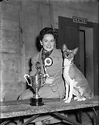 """28/12/1952<br /> 12/28/1952<br /> 28 December 1952<br /> Dog Show, Dublin Society at Portabello Barracks, R.J. Williams of Syngefield, Birr with her basenji """"Leda of Syngefield"""", Green Star best of breed and the Smiler Cup for the sporting Group."""