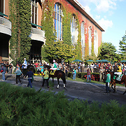 Race horses and jockey's head to the track from the parade ring at Belmont Park during the Jockey Club Gold Cup Day, Belmont Park, New York. USA. 28th September 2013. Photo Tim Clayton