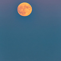 Rising Super Moon at Cape Cod National Seashore, Massachusetts