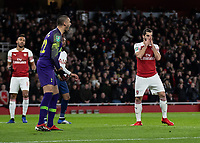 Football - 2018 / 2019 EFL Carabao Cup (League Cup) - Quarter-Final: Arsenal vs. Tottenham Hotspur<br /> <br /> Paulo Gazzaniga (Tottenham FC)  and Henrikh Mkhitaryan (Arsenal FC) ract after he saves a shot at his goal at The Emirates.<br /> <br /> COLORSPORT/DANIEL BEARHAM