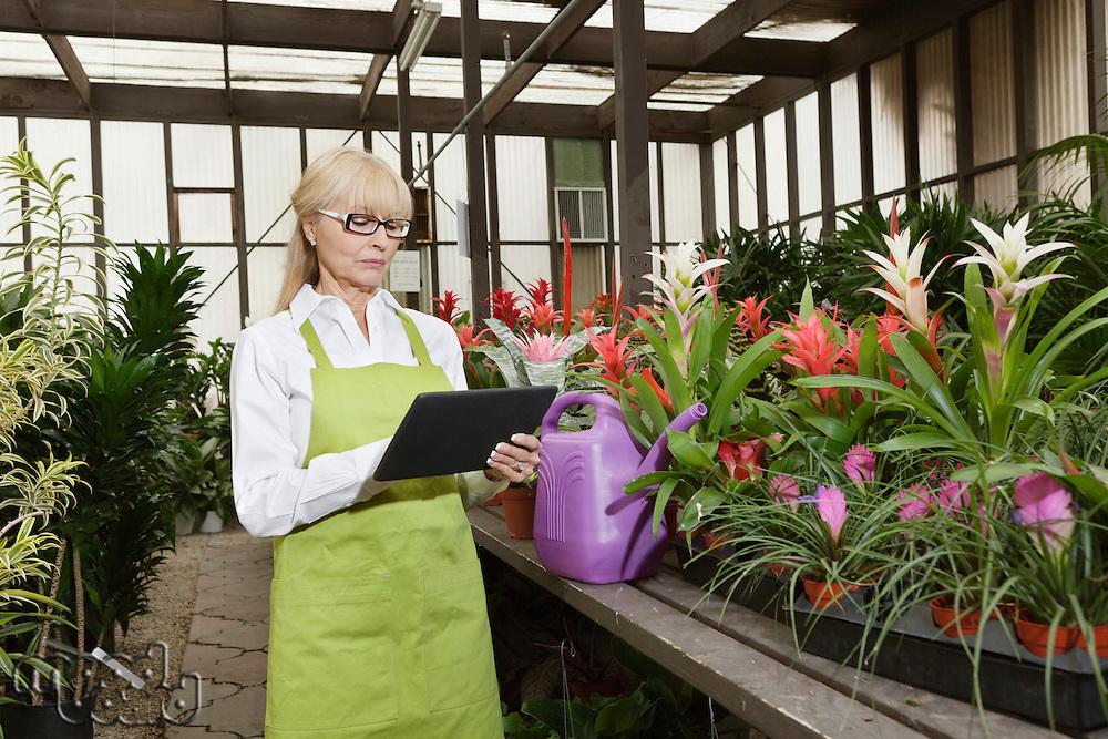 Senior florist using tablet pc in greenhouse