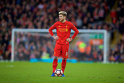 LIVERPOOL, ENGLAND - Saturday, January 28, 2017: Liverpool's Alberto Moreno in action against Wolverhampton Wanderers during the FA Cup 4th Round match at Anfield. (Pic by David Rawcliffe/Propaganda)