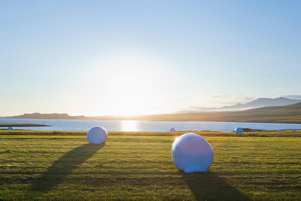 Hay bags in the evening sun in Hvalfjordur