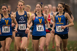 London, Ontario ---2012-11-10--- Jenna Van Vliet of Victoria Vikes competes at the 2012 CIS Cross Country Championships at Thames Valley Golf Course in London, Ontario, November 10, 2012. .GEOFF ROBINS Mundo Sport Images