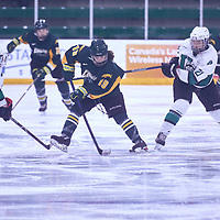 1st year forward, Sidney Shyiak (19) of the Regina Cougars during the Women's Hockey Away Game on Fri Jan 11 at University of Saskatoon. Credit: Arthur Ward/Arthur Images