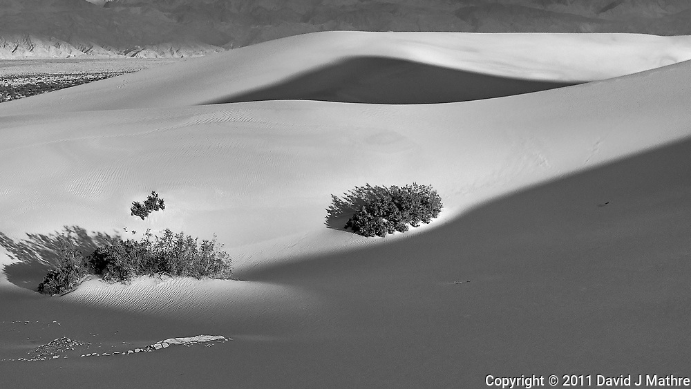 Mesquite Flats Sand Dunes. Death Valley National Park. Image taken with a Leica D-Lux 5 camera.