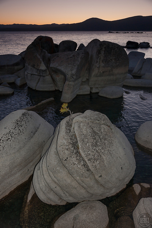 """Tahoe Boulders at Sunset 3""- These boulders and bonsai like rock, and sunset were photographed at Crystal Point, Lake Tahoe"