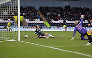 Gary Irvine bundles home Dundee's equaliser as St Mirren keeper Mark Ridgers appeals for offside -  St Mirren v Dundee, SPFL Premiership at St Mirren Park <br /> <br /> <br />  - &copy; David Young - www.davidyoungphoto.co.uk - email: davidyoungphoto@gmail.com