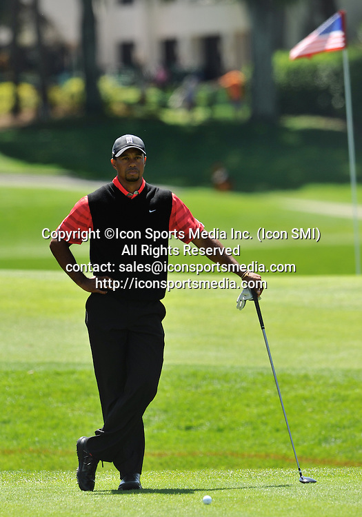 25 March 2013: Tiger Woods on the 18th tee during the final round of the Arnold Palmer Invitational at Arnold Palmer's Bay Hill Club & Lodge in Orlando, Florida.