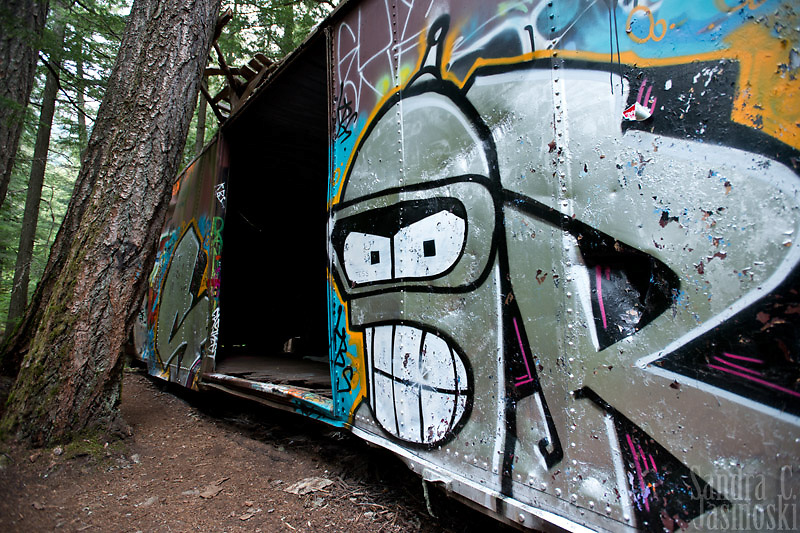 Train Wreck in the Woods