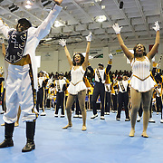 Members of the E.E. Smith Marching Band perform Saturday January 19, 2015 during the Historically Black College and University Experience at the Schwartz Center on the Campus of Cape Fear Community College in Wilmington, N.C. (Jason A. Frizzelle)