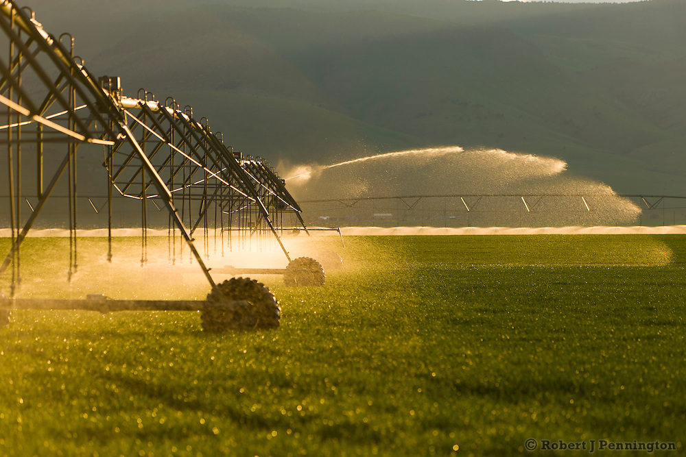 Automated irrigation of a farm field.