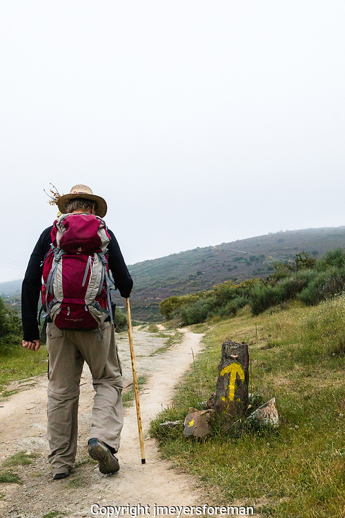 morning on the camino