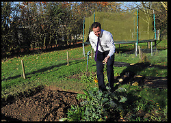 The Prime Minister David Cameron in his back garden at his house in Dean as he waits for the Qatari Prime Minister to arrive for lunch,  Friday November 25, 2011.  Photo by Andrew Parsons / i-Images